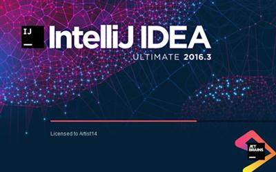 IntelliJ IDEA Ultimate v2016.3.3 (Mac OSX)