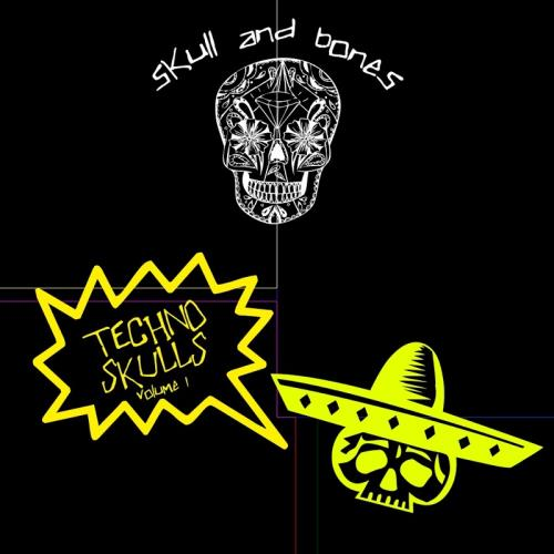 Techno Skulls, Vol. 1 (2017)