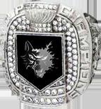 Победитель 5 сезона НХХЛ (Omsk Wolfs)
