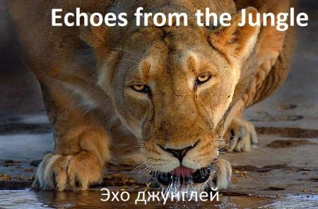 Эхо джунглей/Echoes from the Jungle