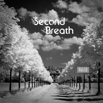Second Breath - Unknown Bands Vol.13 (2017)
