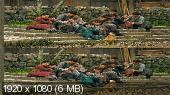 Зов героев 3D / Wei cheng jian ba 3D  Вертикальная анаморфная стереопара
