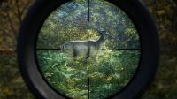 TheHunter: Call of the Wild [v 1.19 + DLCs] (2017) PC | RePack от FitGirl