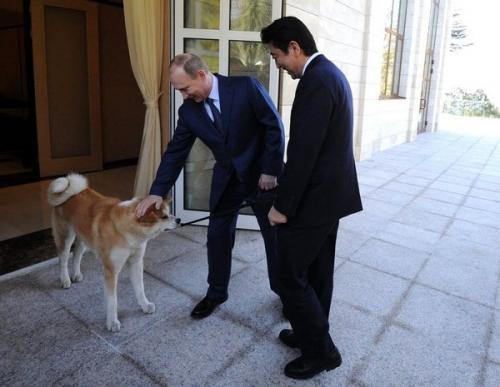 Владимир Путин перед началом встречи с премьер-министром Японии Синдзо Абэ