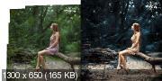 Курс обработки фотографий различной сложности (2017) HDRip