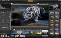 Corel PaintShop Pro X9 Ultimate 19.2.0.7 RePack by KpoJIuK