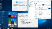 Windows 10 Professional VL 1703 RS2 by OVGorskiy 04.2017 2DVD (x86-x64) (2017) [Rus]