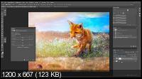 Выборочная коррекция цвета в photoshop (2017). Скриншот №2