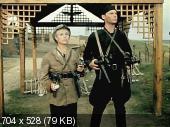 Крепкий орешек /  1967 / DVDRip
