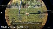 Hunting Simulator v1.1 + DLC (2017/Rus/Eng/Multi12) RePack от qoob