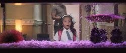 """В поисках золотой рыбки (2017) HDRip от RG """"Басмачи"""""""