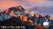Windows XP Pro x86 SharpEXP v.3.0 by Fedya (RUS/2017)
