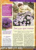 Цветок №19 (325) (октябрь /  2017)