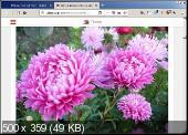 FireFox Quantum 60.2.2 ESR Portable + Расширения by PortableApps - быстрый, многофункциональный и расширяемый браузер