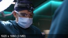 Добрый доктор / Хороший доктор / The Good Doctor [Сезон: 2] (2018) WEB-DL 1080p | Jaskier