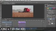 Детальное обучение в Photoshop, Bridge и Camera Raw (2018)