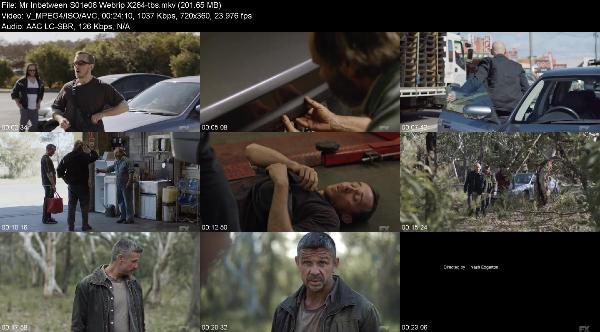 Mr Inbetween S01e06 Webrip X264-tbs
