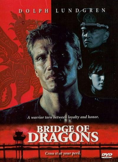 Bridge of Dragons 1999 1080p WEB-DL AAC 2 0 H 264-FGT