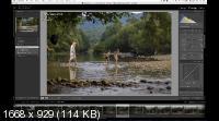 Видеоурок Photoshop: Дети в лесу (2019) HDRip