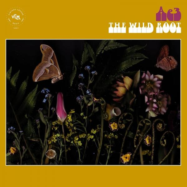 Alan Evans Trio The Wild Root  (2019) Enraged