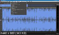MAGIX SOUND FORGE Pro 13.0 Build 100 RePack by KpoJIuK