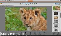Corel PaintShop 2020 Pro 22.0.0.132 Ultimate