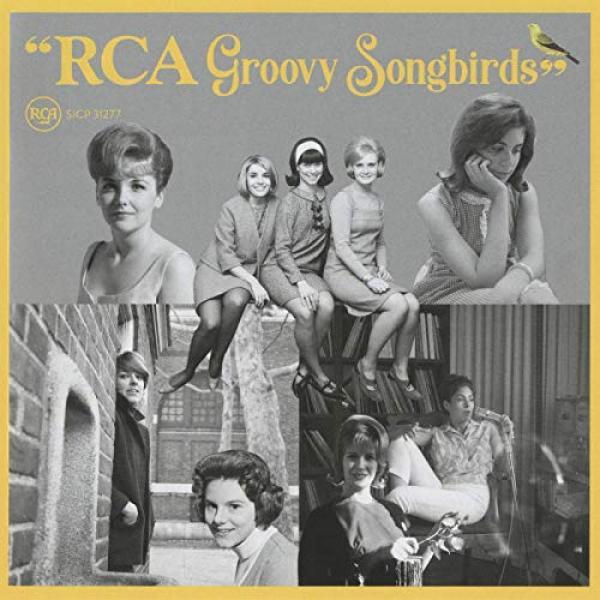 VA   RCA Groovy Songbirds (2019)