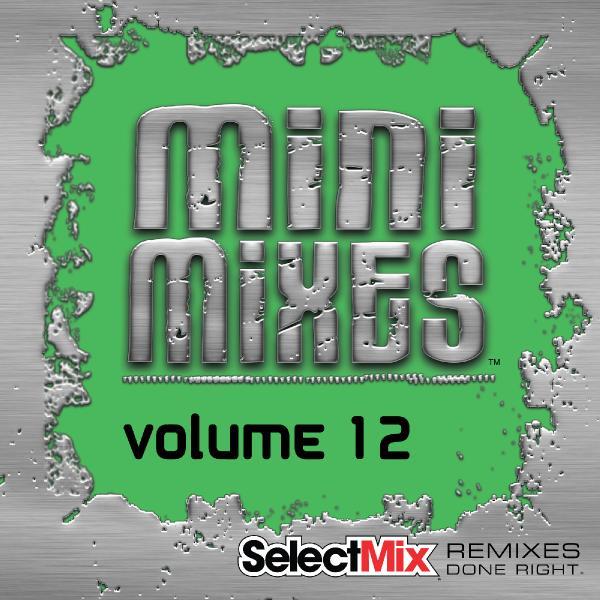Select Mix Mini Mixes Vol  12 (2019)