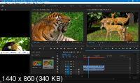 Adobe Premiere Pro CC 2019 13.1.5.47 Portable by punsh