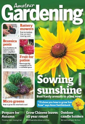 Amateur Gardening  2 September (2017)